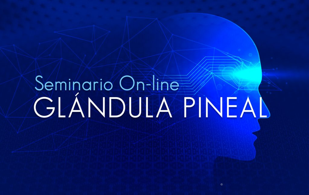 Seminario on-line de desarrollo personal de la glándula pineal. Diego Moscoso.