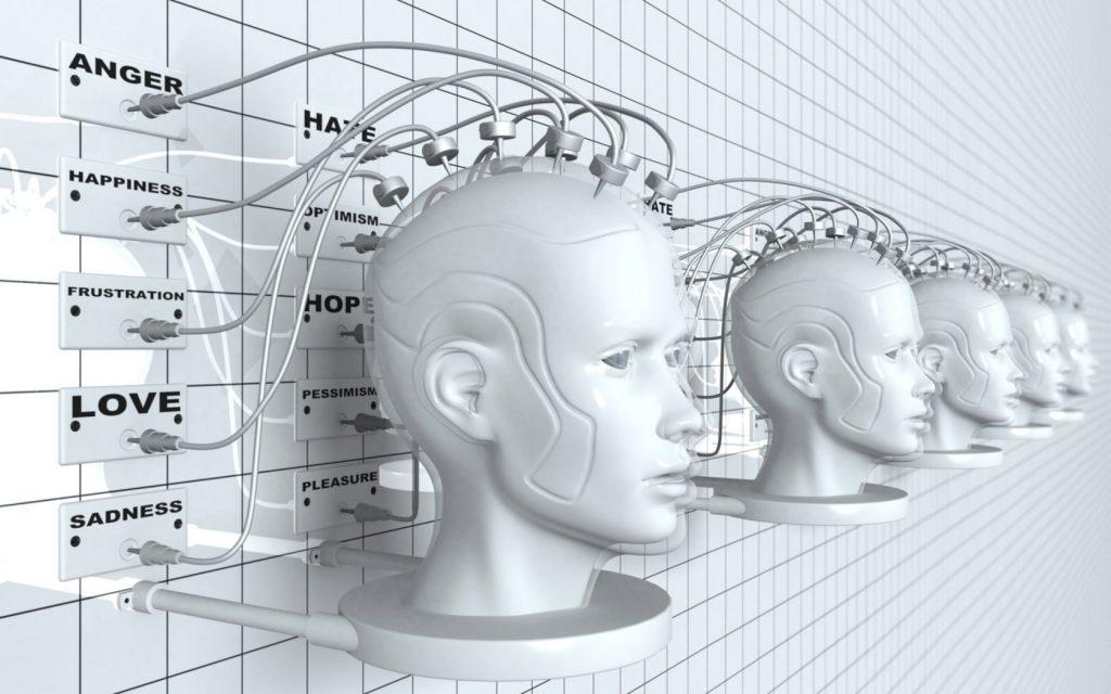 neuroquimica de la timidez